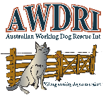 Australian Working Dog Rescue